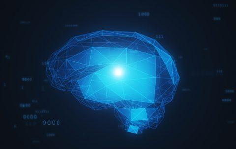 центральная неврная система