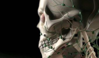 kraniosakralnaya terapiya cherepnyh nervov