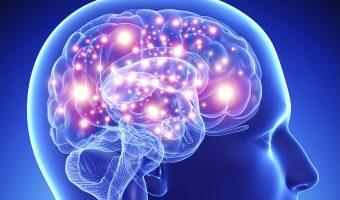 нейродинамика