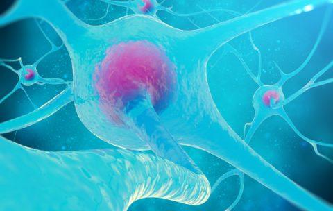 neural-network-brain-cells-nervous-system_92790-80