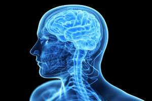 prikosnovenie k mozgu