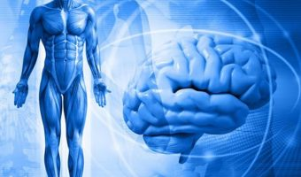 prosteishie algoritmy raboty s psihosomatikoi