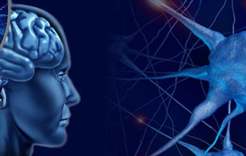 Tehniki-na-golovnom-mozge NM-4 IKPK