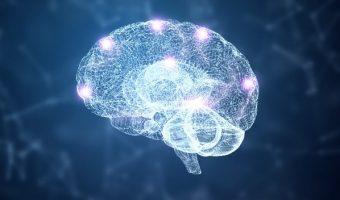 Выслушивание второго мозга — энтеральной нервной системы (CLSB)