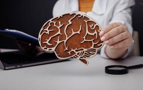 Семинар по остеопатии - Остеопатический подход к периферической нервной системе